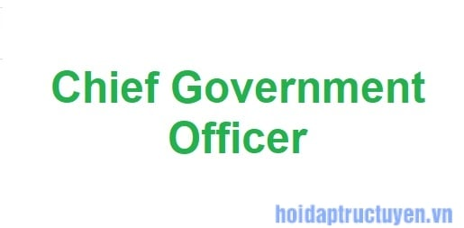 Chief government officer