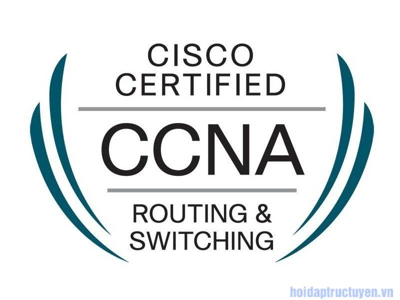 Những CCNA là gì?