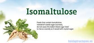 Isomaltulose là gì? Tác dụng của nó ra sao? Tại sao phải dùng nó?