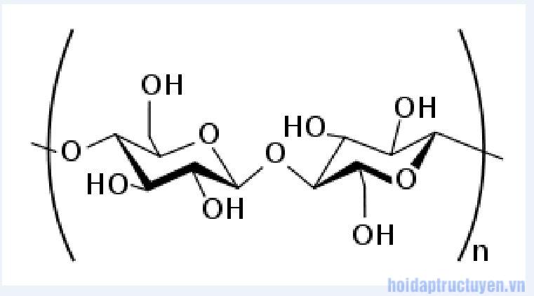 Cellulose là gì?