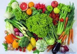 Dietary Fiber hay chất xơ là gì?