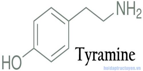 Tyramine là gì