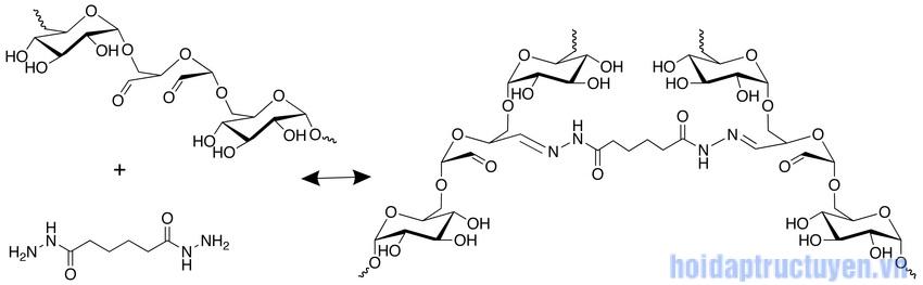 Adipic Acid Dihydrazide trong mỹ phẩm